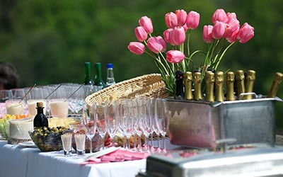 House party catering and small party catering outdoor for organic catering